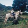 たった2つの言葉だけで乗り切ったオーストラリアのファームステイ体験談【カランビンの乗馬クラブ】
