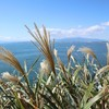 【関東家族旅行⑥】江ノ島の風景あれこれ【江ノ島その6】