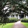 サウスカロライナ州のMagnolia Plantation &Gardensに行ってきた…