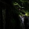 初夏の白糸の滝で心洗う