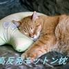 【モットン枕】口コミや低評価も紹介。寝返りしやすい高反発まくら