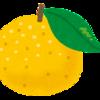 冬至の柚子はなぜ体を癒すのか?を考えてみた!