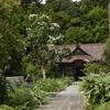 秋の訪れ、シロバナハギの咲く寺・・