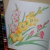 完成】ペリシア色鉛筆でグラジオラスを塗ってみたページが完成しました☆花日和花だより