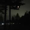 軽井沢のコンビニ一覧と営業時間、そして深夜に困ったときの裏技まとめ