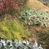 徒然草 第十段 家居のつきづきしく 庭は主人を表す