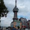 【別府タワー】東京タワーや通天閣と兄弟のタワー。リーズナブルな入場料で地上55mの展望台からは市街地や海が一望できる。