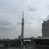 雨が降る前に隅田川の桜を見に行ってきた話
