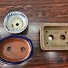 【植え替える前に】鉢の仕込みについて【そして水やりの話】