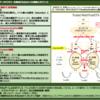 日本政府が世界に発信するDFFT のコンセプト「Trusted Web」の具体策を聞く(3)