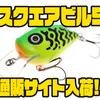 【サルモ】ポーランド製ルアー「スクエアビル5」通販サイト入荷!