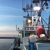 白老沖堤の釣り2 悲劇