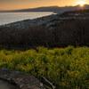 【写真一発!】春を待つ、陽が落ちる