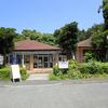 【愛媛県愛南町】珊瑚が見れるキャンプ場、須ノ川公園に行ってきた!