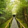 庭園45 大徳寺塔頭高桐院庭園「楓の庭」 静かに苔と紅葉を眺める庭園