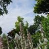 【2017子連れ北海道(4)】北海道ガーデン街道の「十勝ヒルズ」でランチ&ガーデン散策