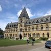 オックスフォード大学の自然史博物館に迷い込んでしまった話