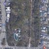 下賀茂神社の植生 Part1(2021年4月9日)