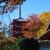 まだ少し早いけど、本土寺の紅葉を見に行きました!