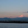 江ノ島富士 Enoshima Calling #31