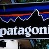 登山ウェアを安く手に入れる!Patagoniaセール真っ只中
