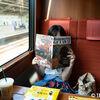 小田急ロマンスカーに乗るならサルーン席(準個室)がおすすめ!