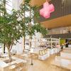 【オススメ5店】天神・西中洲・春吉(福岡)にあるラウンジが人気のお店