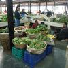 海外女一人旅ブータン / 市場とアーチェリー観戦