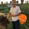 9月の台風の影響/ひかりの種お野菜BOXの畑