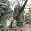 【立石神社】現代に残る磐座!水の神様を祀る古からの祭場