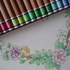 完成】無印良品色鉛筆でお花のページが塗りあがりました☆花日和花だよりより