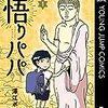 澤江ポンプ「悟りパパ1」 紹介