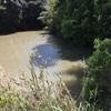 『皆仏池』静岡県掛川野池群バス釣り完全攻略マップ