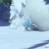 #604 『New ポケモンスナップ』プレイ日記vol.7 ポケモン誘導の分岐ルート【ゲーム】