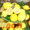 夏バテ防止!都内のレモンスイーツグルメ(めざましテレビ2016/07/06)
