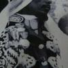「シャヴェッリのスルタン」オロル・ディンレ ―ソマリ人有力者とエチオピア戦争―