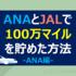 ANAマイルの貯め方①100万マイルを貯めて48ヶ国を旅した方法