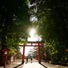 九州一人旅~鹿児島-霧島神宮 なんか神々しい写真