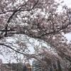 フォーム撮影会 in 新横浜