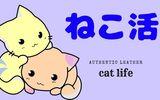 【猫活】猫から学ぶ、ストレスを溜めない生き方