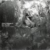 「This World of Dew」Aaron Shragge & Ben Monder
