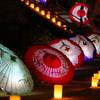 和傘 - 飛鳥光の回廊