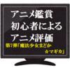 アニメ鑑賞初心者によるアニメ評価 第七弾「魔法少女まどか☆マギカ」