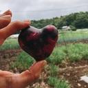 野菜で美活‼️キレイを手に入れる‼