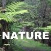 英単語が増える!語源イメージ (7)  NATURE : 自然