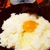とり鉄@大井町(半額串焼き&烏骨鶏の玉子掛けご飯)