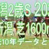 【新潟2歳S 2020】過去10年データと予想