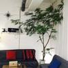 ゲストハウスに住み込みヘルパーとして働いた感想と生活費を公開!