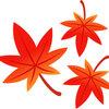 秋が近づく嬬恋