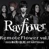 Rayflower配信ライブ当日!